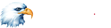 Americaneagle.com Website Design and Development